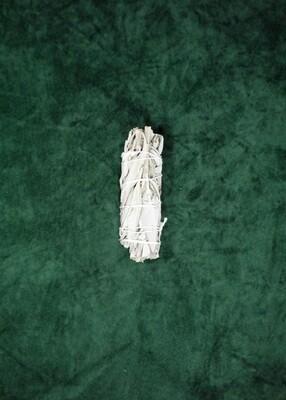 California Broadleaf White Sage Bundle - Medium