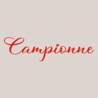 Campionne (33cm) : Mozzarella, viande hachée (V.D.O.F), oignon, oeuf, parmeggiano