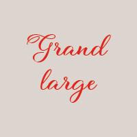 Grand large (33cm) : Mozzarella, filets d'anchois, olives, caprons (fruits du caprier)