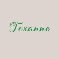Texanne (33cm) : Mozzarella, poulet épicé oignon, poivron, piment frais