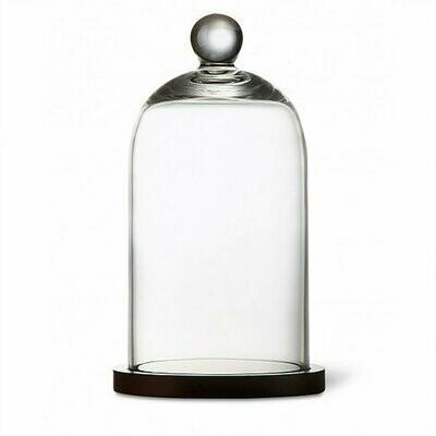 Cloche en verre avec plateau en bois noir
