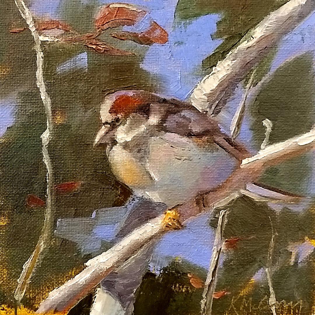 Sunning Sparrow