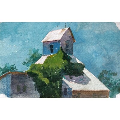 ​Green Ivy on a Tin Roof by Grace Aldrich