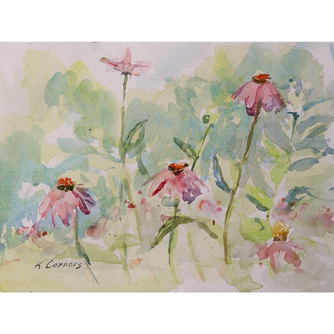 Cone Flowers by Kathleen Connors