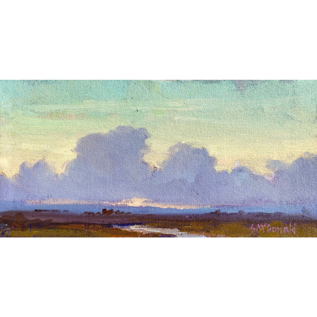 The Fields at Twilight by Steven McDonald