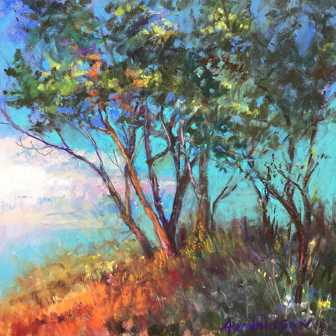 Bay Overlook by Beverly Amundson