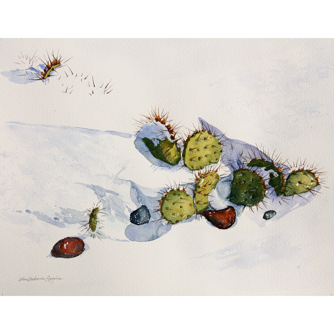 ​Cactus in the Snow by Colleen Gregoire