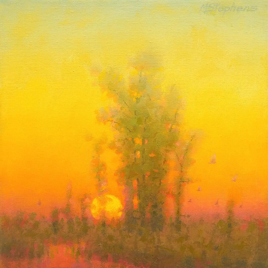 Misty Marsh Evening