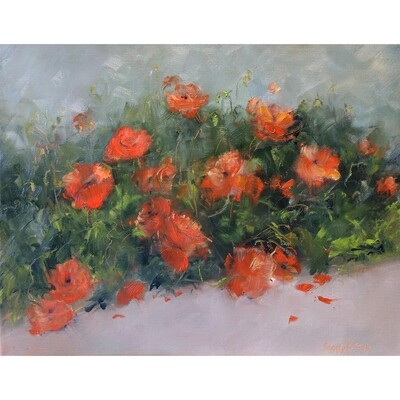 Poppies by Sandy Braga
