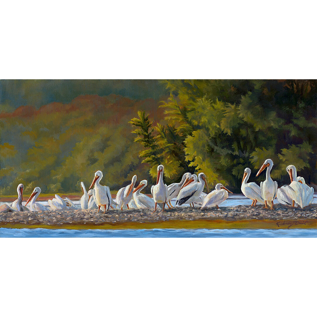 Tennessee River's Pelican Island by Kimberly Daniel