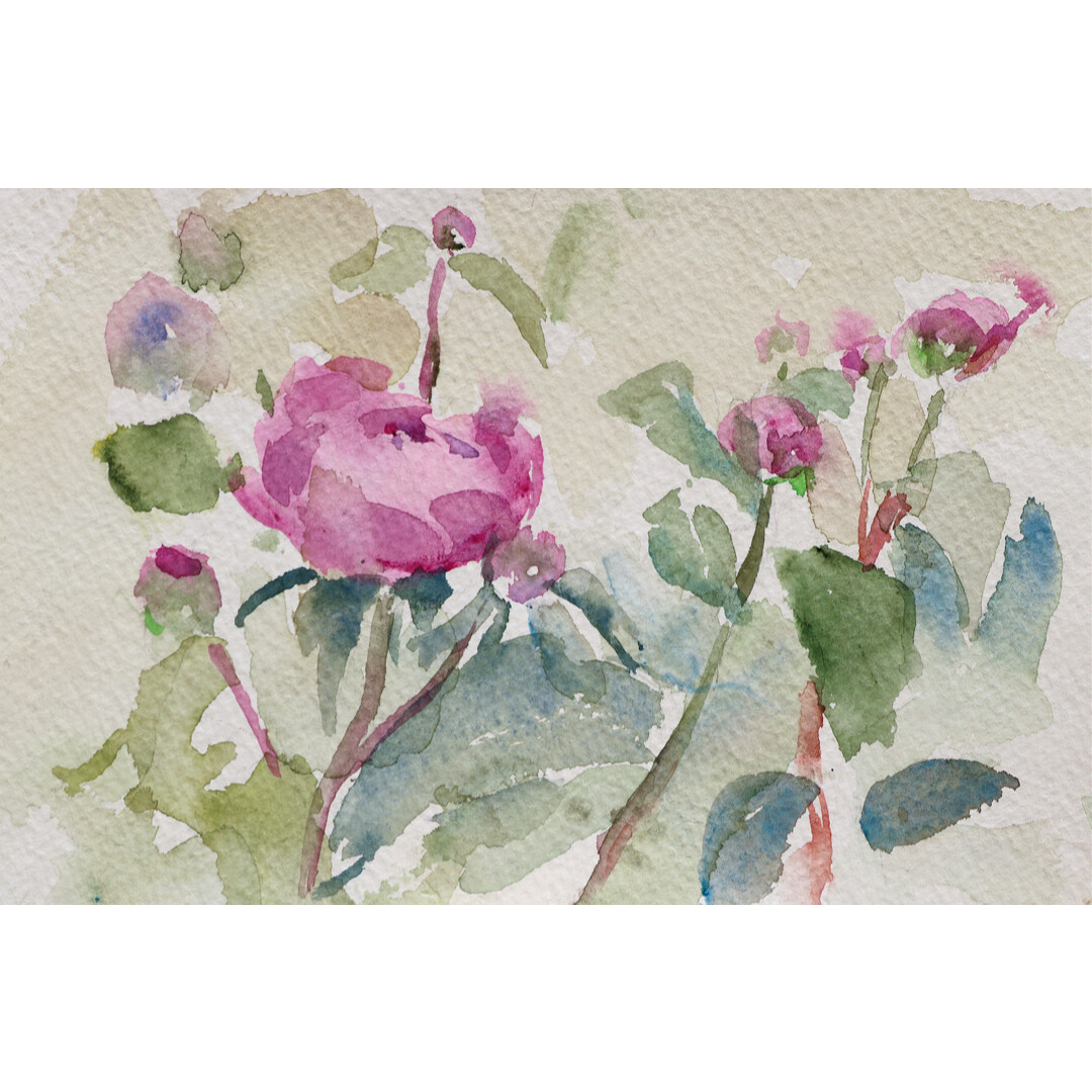 Early Peonies by Kathleen Connors