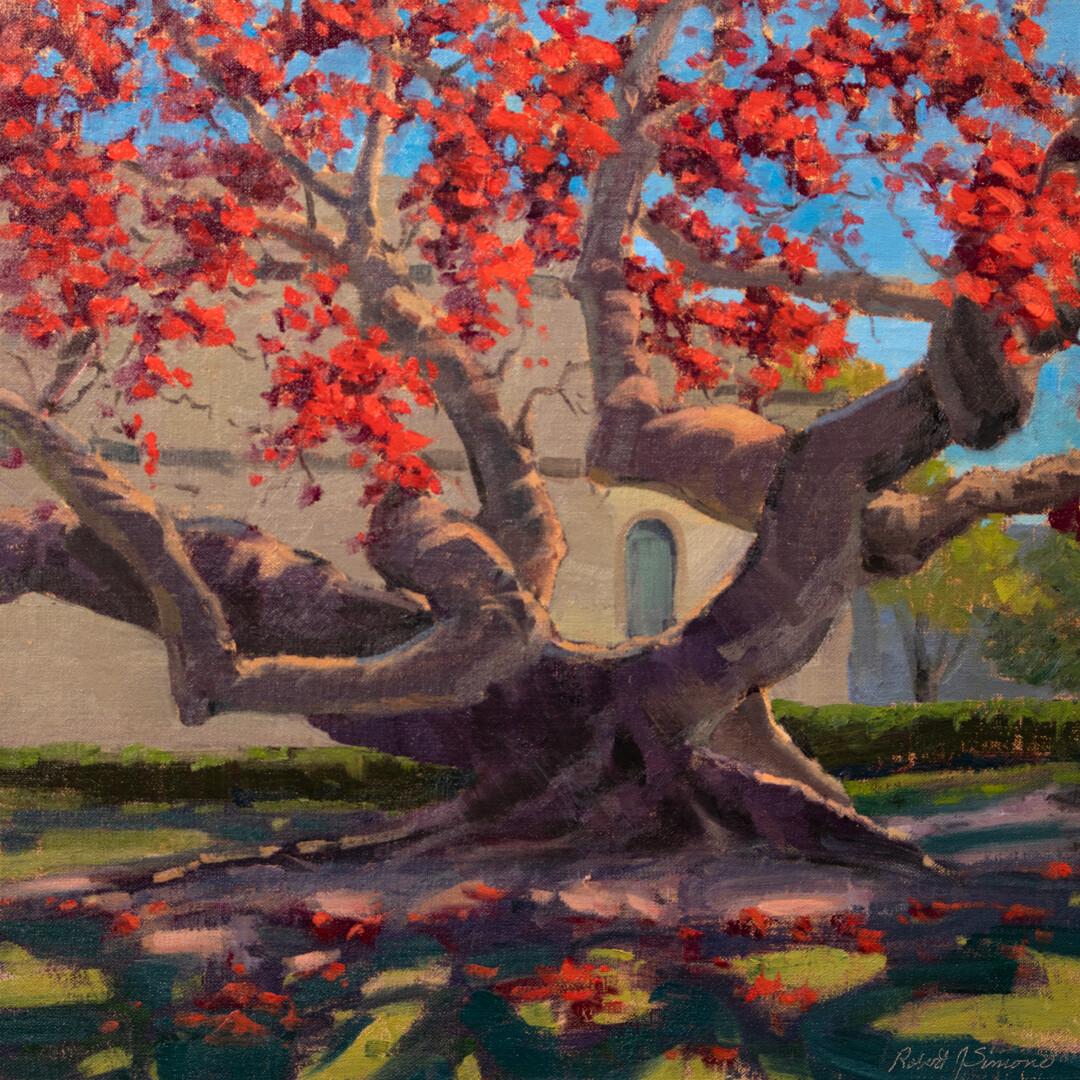 Bombax Tree by Robert Simone