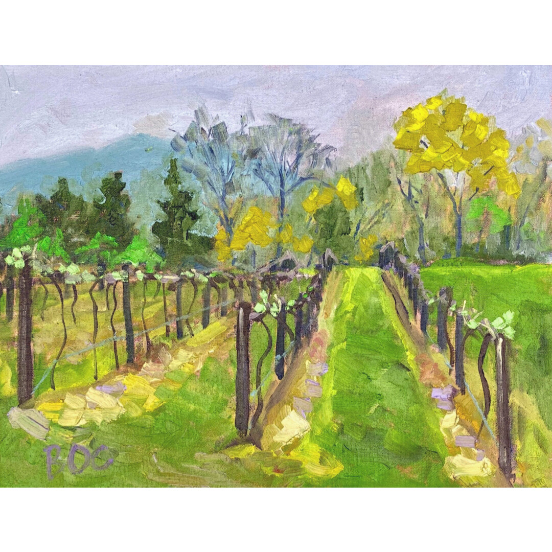 Rainy Vineyard by Brent O'Connor