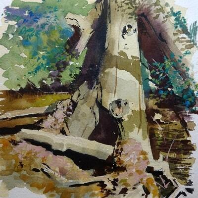 Lion's Park Creek by Grace Aldrich