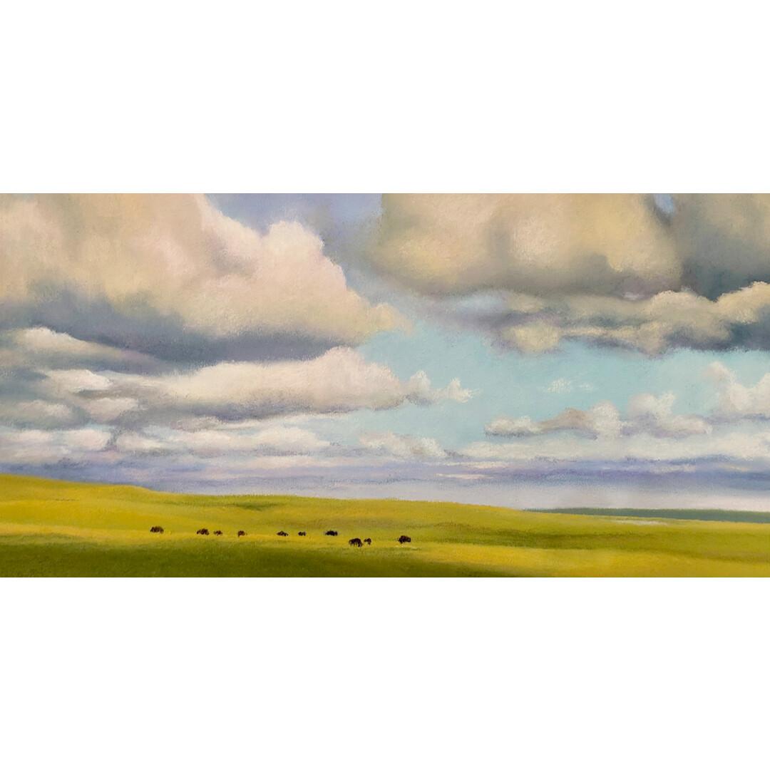 Buffalo, Tallgrass Prairie by Kirstin Novak