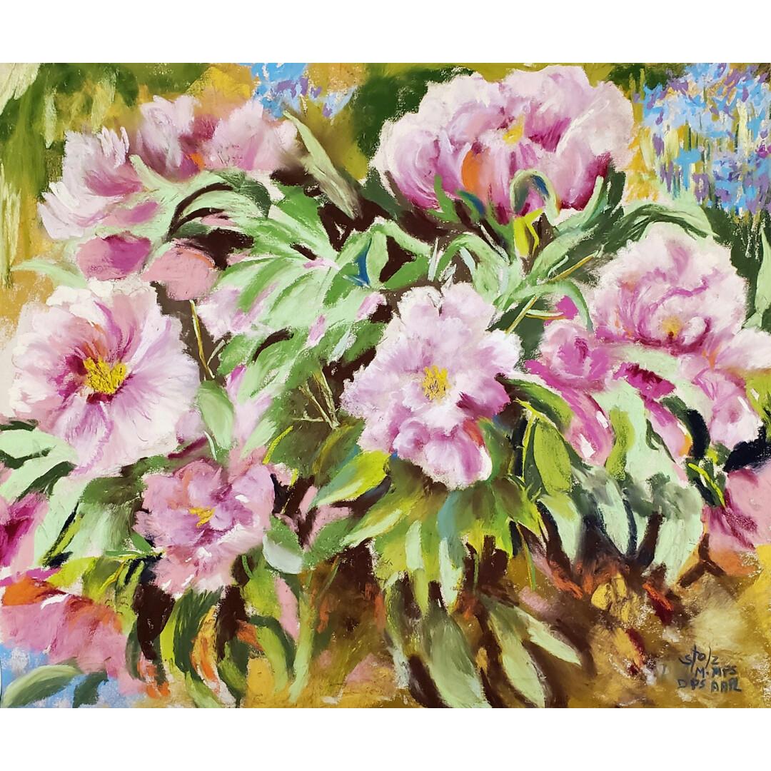 Arboretum Peonies by Diane Stolz