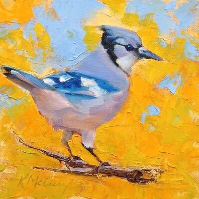 Autumn Blue Jay