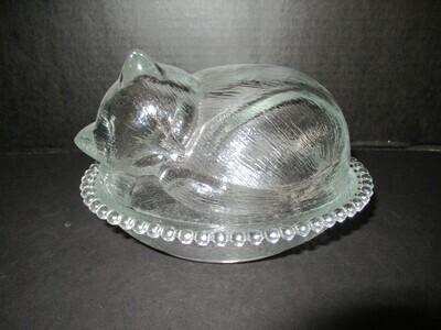 Nesting Cat