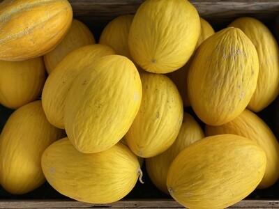 Online- Canary Melon $3.99/each