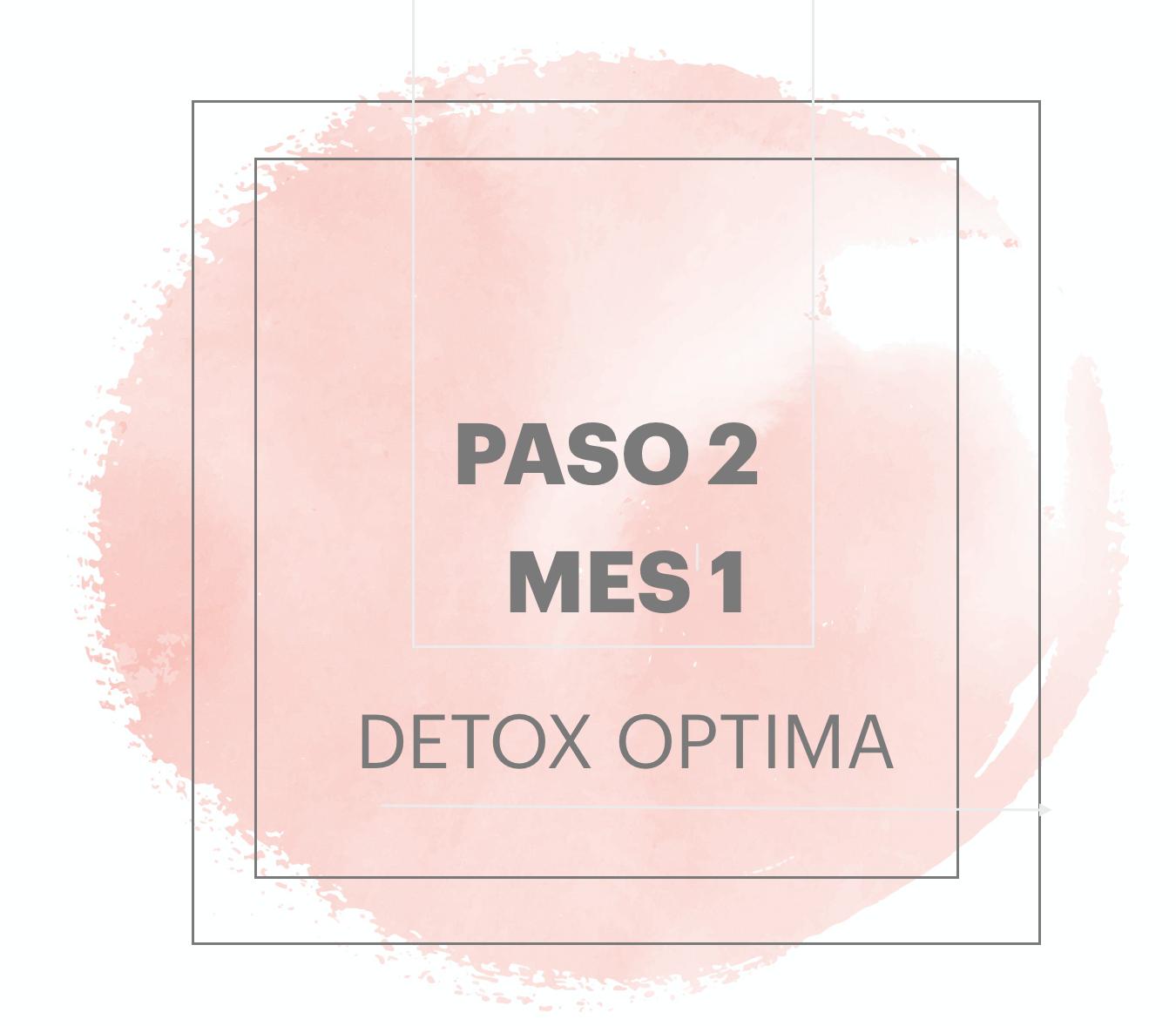 PASO 2 | MES 1 CAND Optima