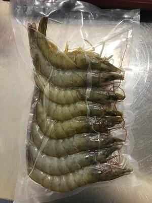 Extra Large Frozen Vannamei (White Shrimp)