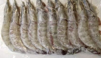 Large Frozen Vannamei (White Shrimp)