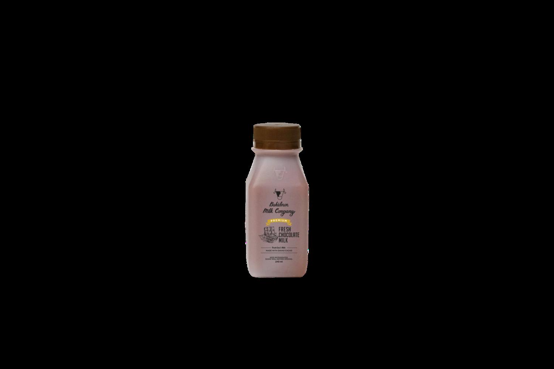 Premium Fresh Chocolate Milk (240ml)