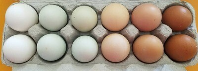 One (1) Dozen LG Eggs Pasture Raised, Non-GMO
