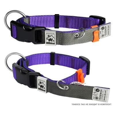 Ошейник с Адресником для небольших собак, фиолетовый