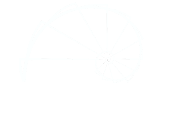 Poly-morph Plants
