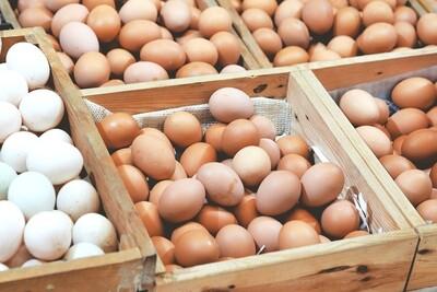 Eggs (pack of 24)