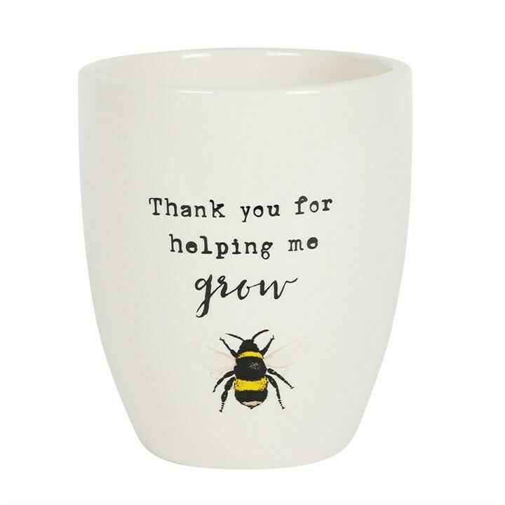 Bee Plant Pot