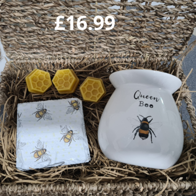 """""""The Full Hive"""" Wax Melter Gift Set"""