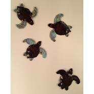 Copper Turtle Hatchlings