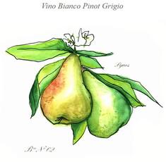 Visintini Pinot Grigio 2018