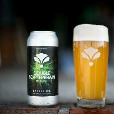 Bearded Iris Double Scatterbrain DIPA