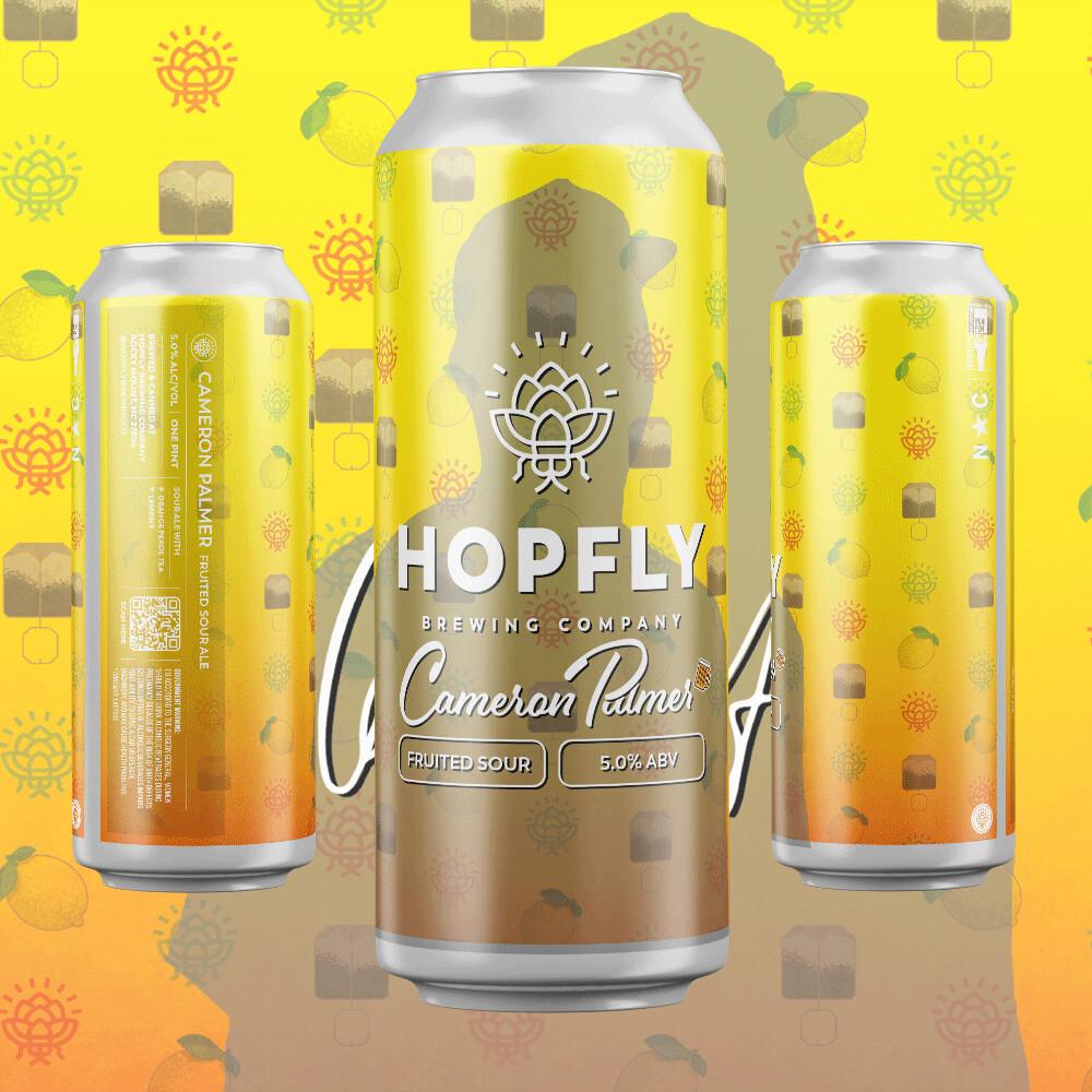 Hopfly Cameron Palmer Sour Ale 4pk