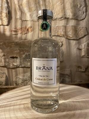 Eau de vie de cédrat Corse, domaine Brana