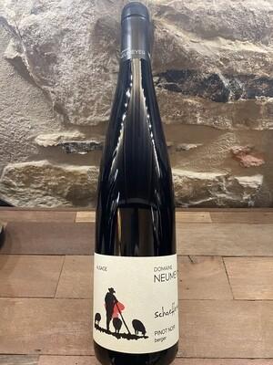 Domaine Neumeyer, Pinot Noir, Berger 2019, Alsace BIO