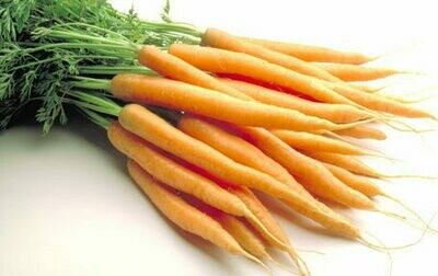 Carrots (Bunches).  English