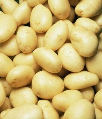 Salad Potatoes 500g