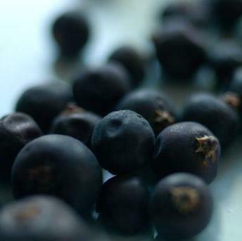 Blueberries - 125g Punnet