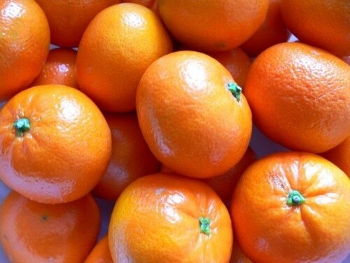 Clementines pack of 10