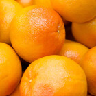Oranges Medium, pack of 4