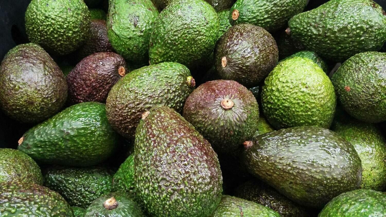Avocados - ripe and ready.       Peru