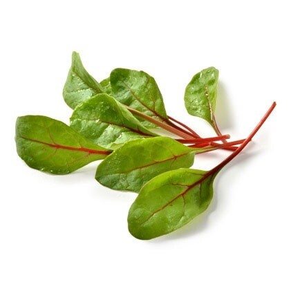 Italian Salad Leaves - Mixed