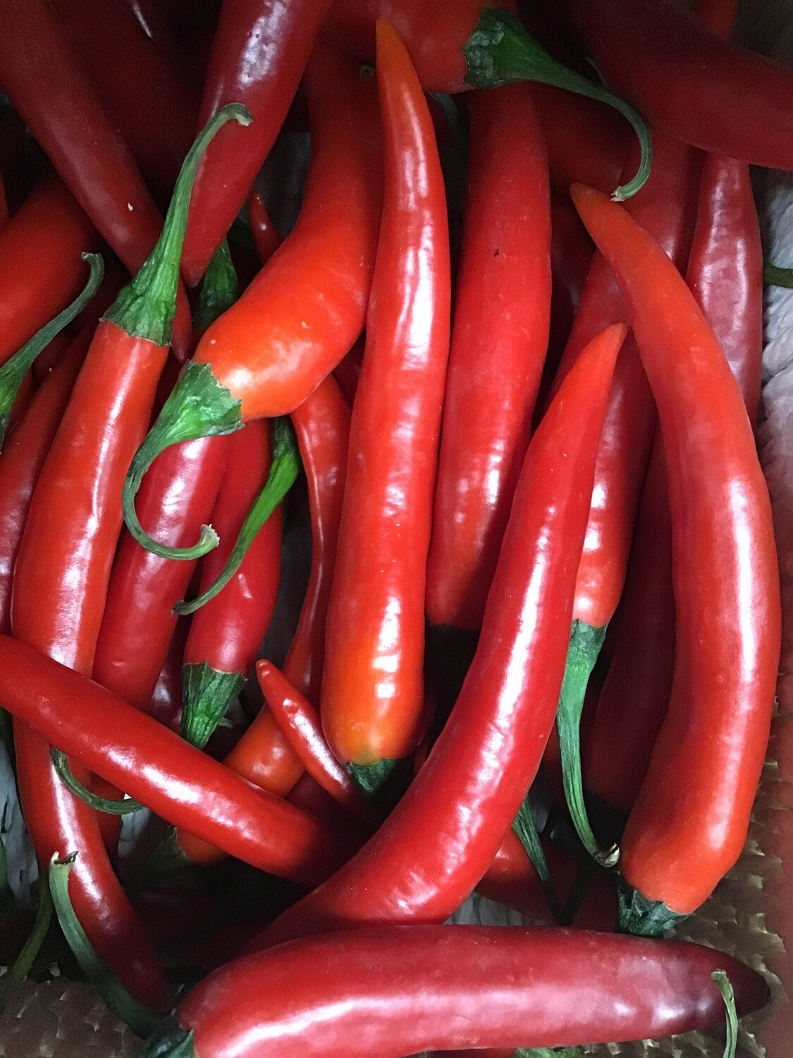 Long Red Chillies. 100g. (Approx. 7)