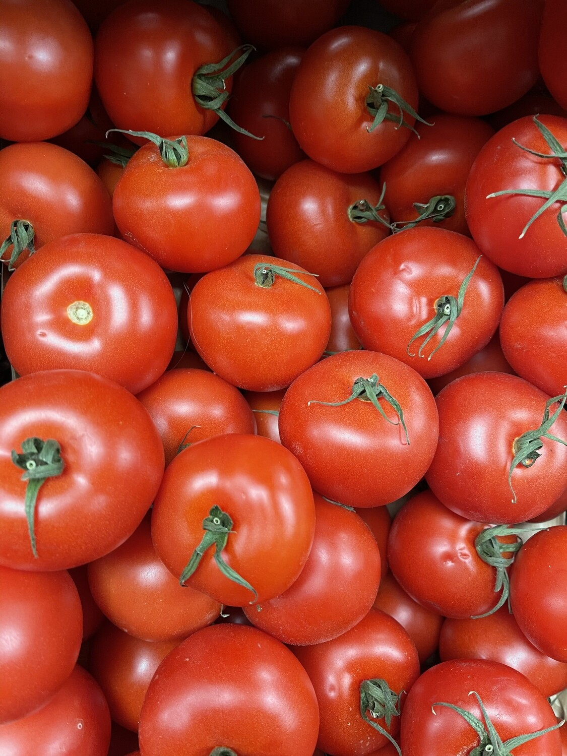 Salad tomatoes- 500g pack
