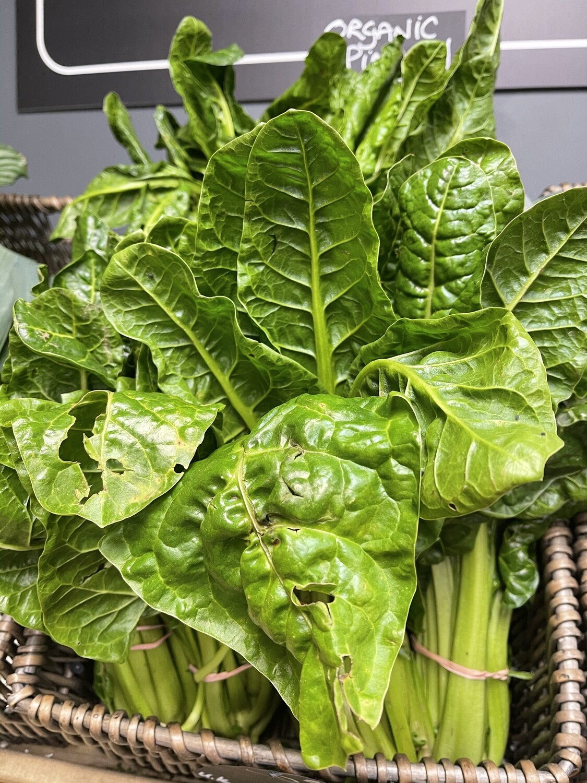 English Organic Spinach Bunch
