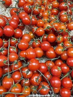 Cherita Tomatoes on the Vine - 1 Truss
